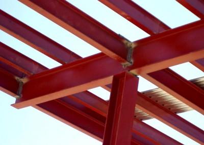 Estructura metalica vivienda